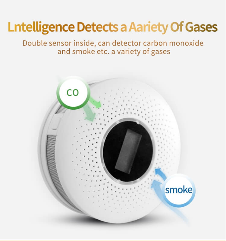 dual sensor standalone smoke co detector fire and carbon monoxide detector